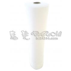 ZA2 二代棉條(捲筒式100入)